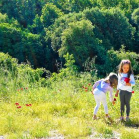 kids Greece Peloponnese vacation