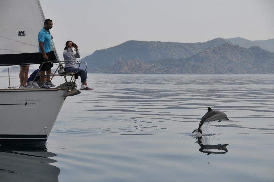 kids Greece dolphin watching