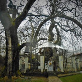 kids Greece peloponnese church in tree