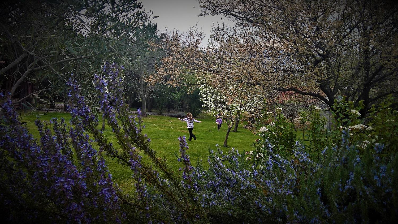 Greece kids amfikaia farm hotel