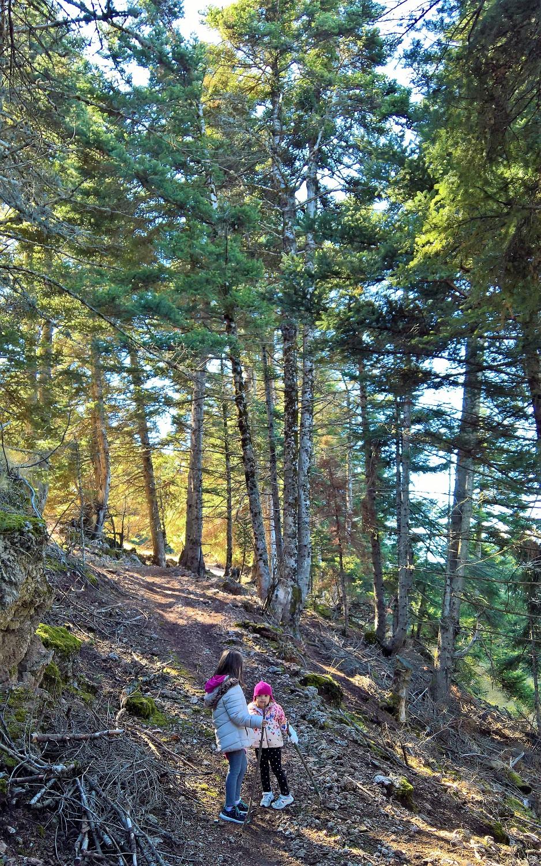 peloponnese kids greece hiking