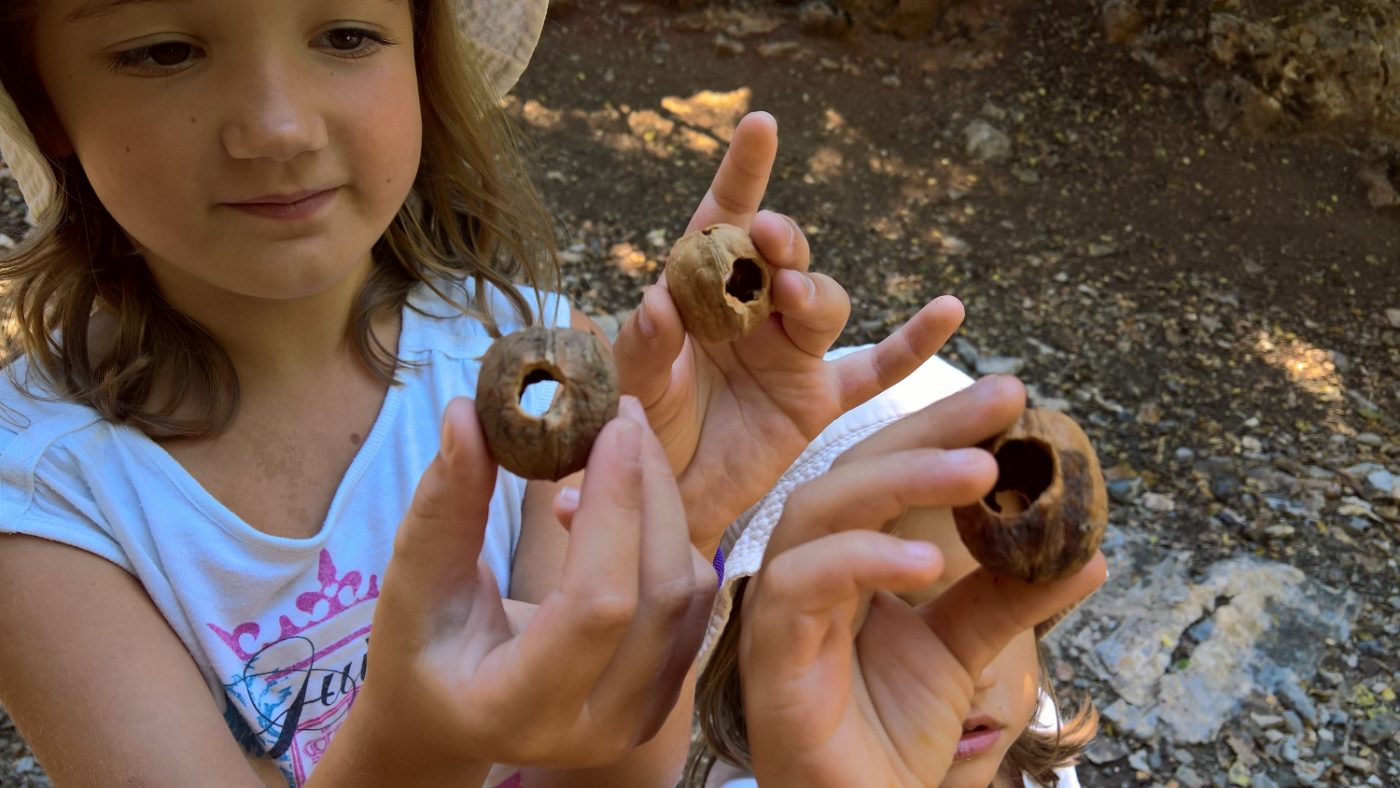 peloponnese kids greece vytina chestnuts
