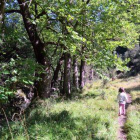 peloponnese kids greece menalon trail