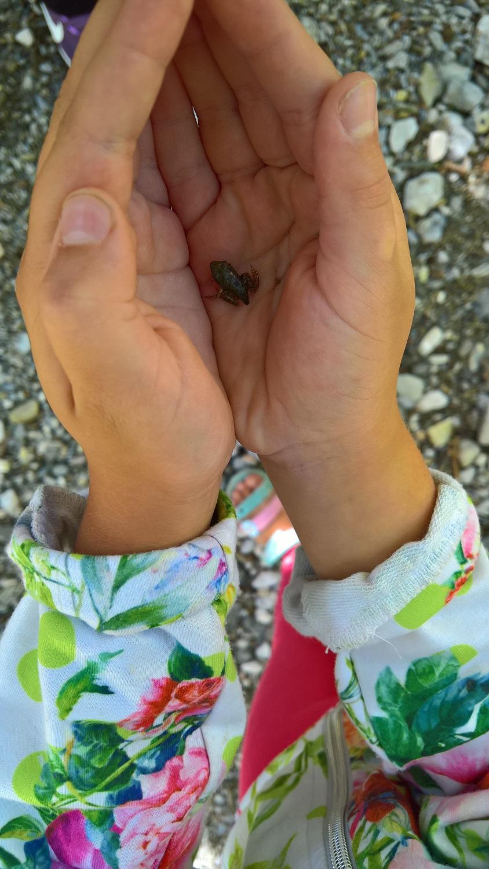 peloponnese kids greece vytina frog baby