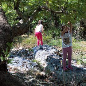 peloponnese kids greece vytina mylaon