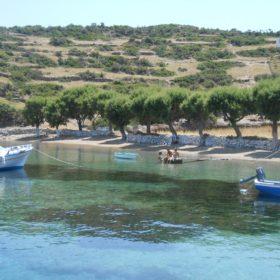 Greek islands marathi dodecanese