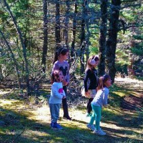 hiking Menalo Greece kids forest