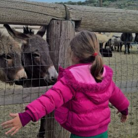 farm athens kids Greece