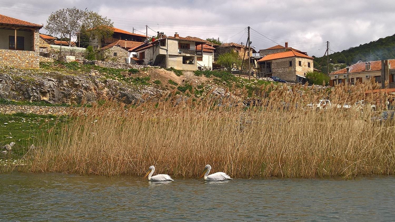 kids Greece ecotourism birdwatching