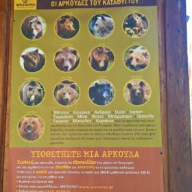 kids Greece bear arctouros ecotourism