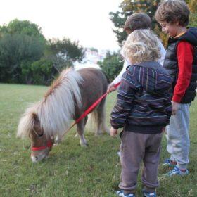 park ponnies Greece kids gentle carousel magic garden