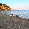kids Greece beach koroni