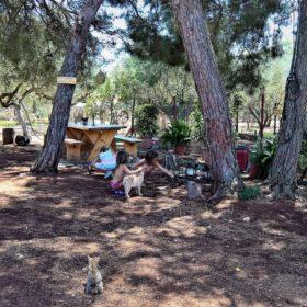 peloponnese kids Greece art workshop marathos