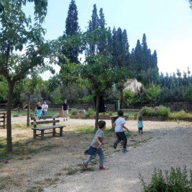 family experiences kids Greece