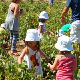 activities park kids Athens Greece