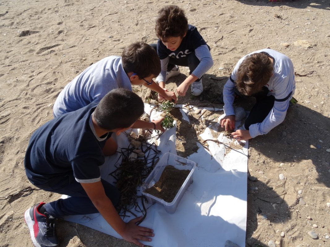 kids beach Greece ecology learning education