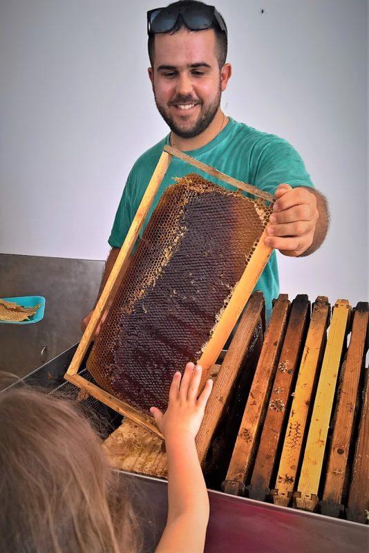 beekeeping Greece kids honey museum