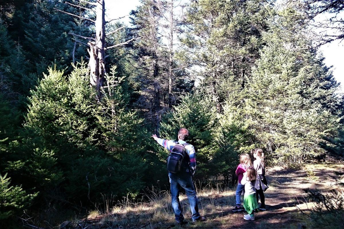 hiking family kids greece menalon trail