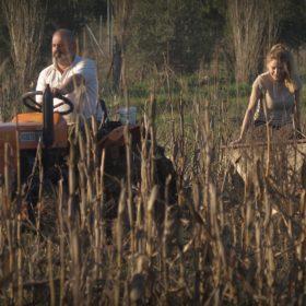 farm Avlonas Athens