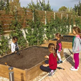 aristi agrifood farming kids