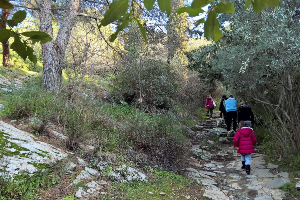 hiking athens mountain kids