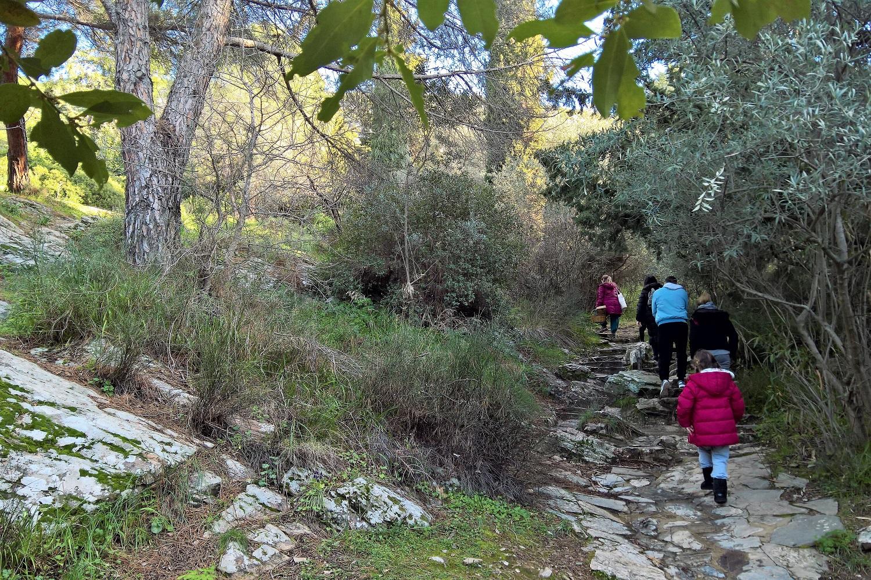 hiking athens mountain kids