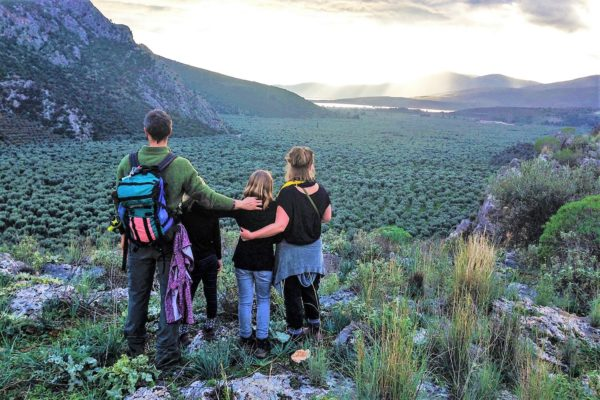 family hiking delphi ancient olive grove