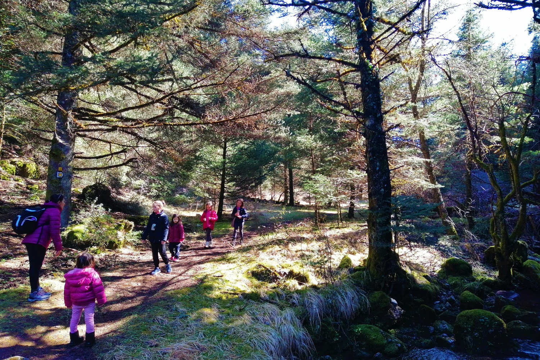 menalon trail hiking familly kids