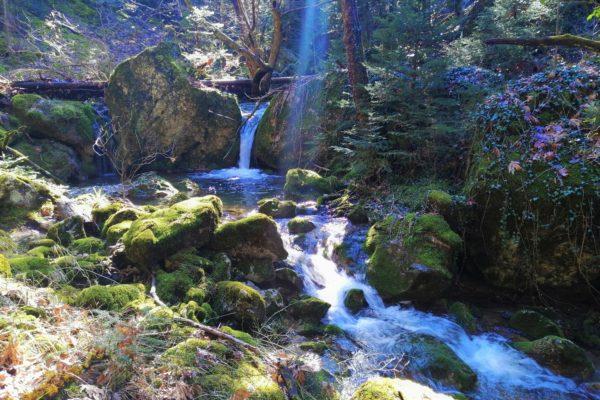menalon trail arcadia peloponnese elati
