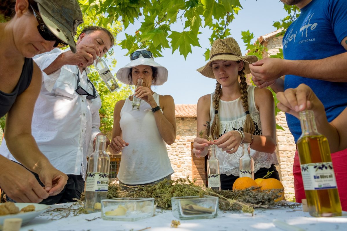 olive oil tasting kalamata messinia peloponnese