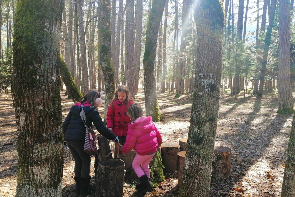 vitina forest kids arcadia