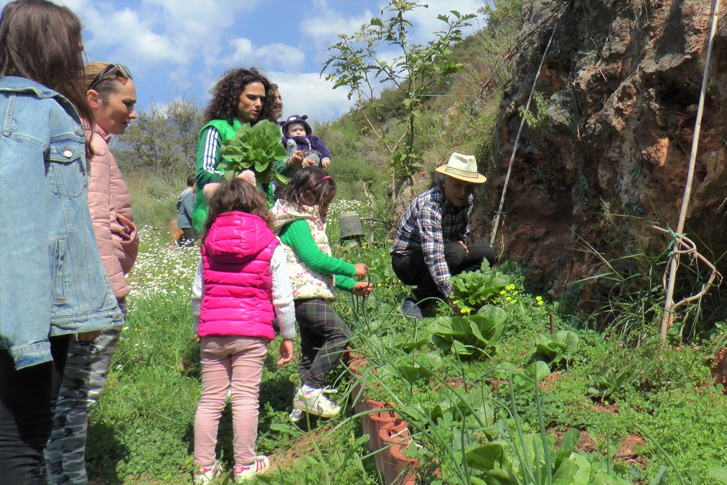 Art Farm messenia peloponnese farming with kids
