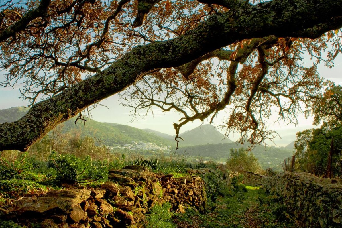 hiking Naxos greek islands