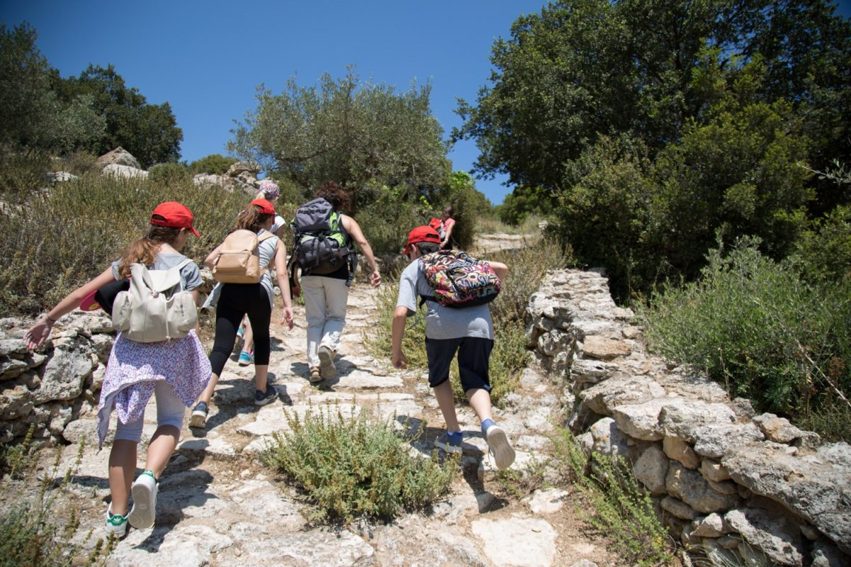 crete activities kids tours greece