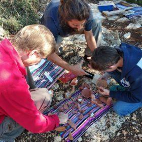 crete activities kids tours greece