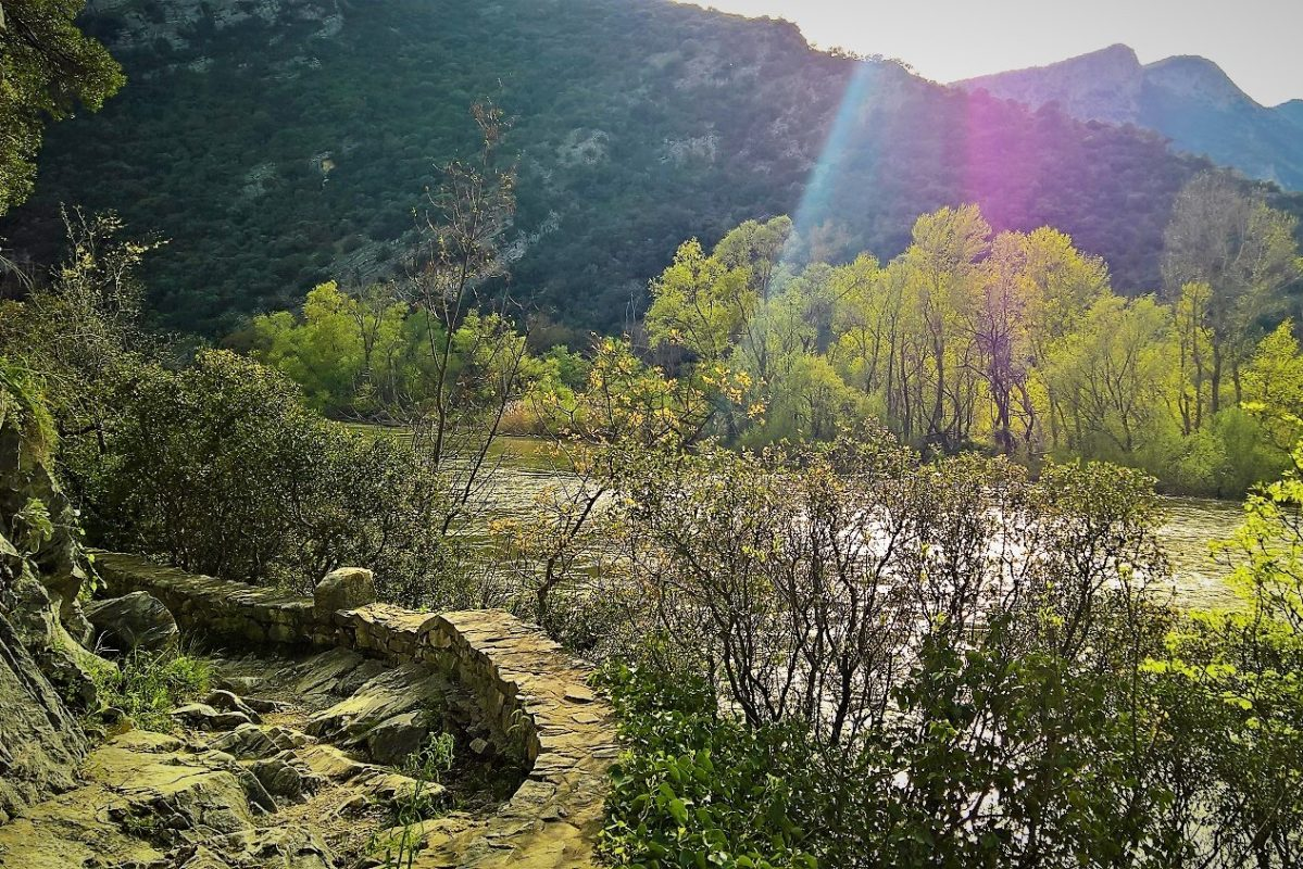 hiking train nestos trail kids greece