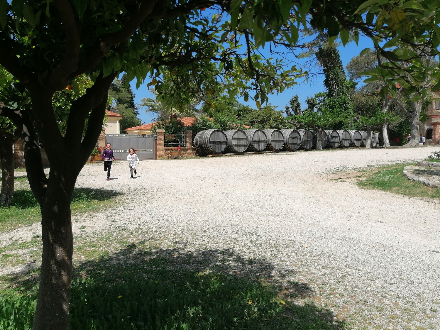 wine castle winery Achaia Clauss Peloponnese
