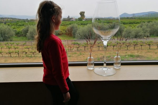 kid winery peloponnese vineyards