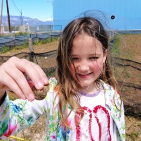 kids snails farm visit greece