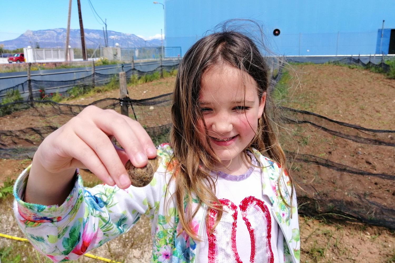 kids snails farm visit greece