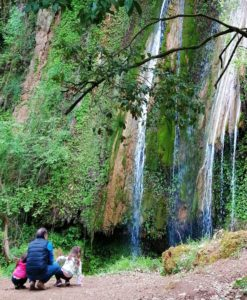 nemouta waterfall family
