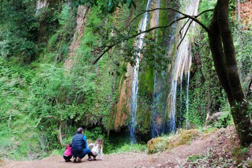 nemouta waterfall family
