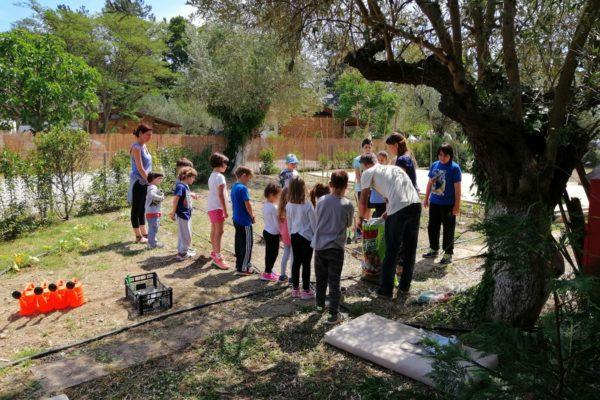 nisi activities kids greece