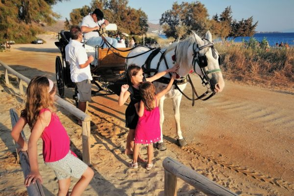 naxos kids horse carriage ride