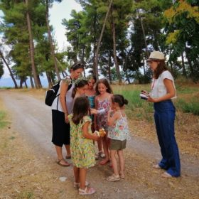 olive oil messinia kids greece