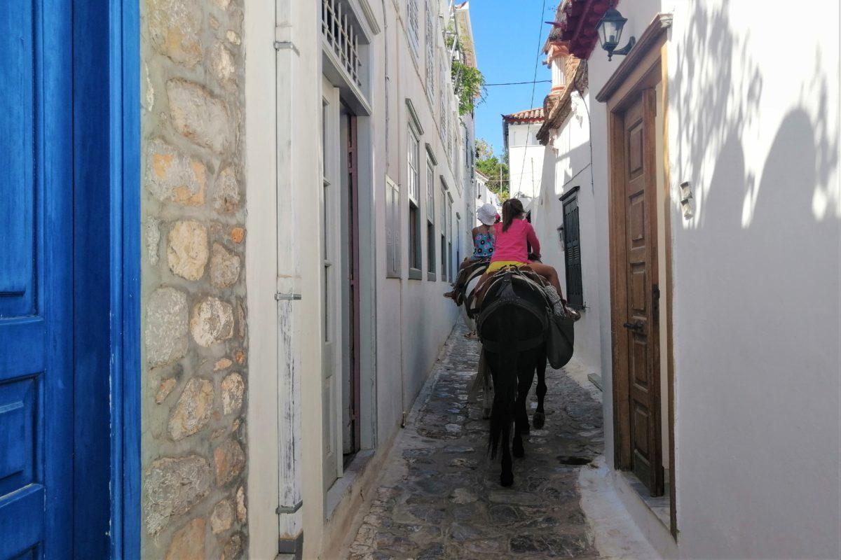 hydra kids greek donkey