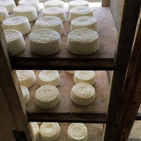 cheese lemnos greek islands
