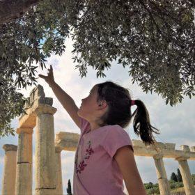 olive archaeology messene kid