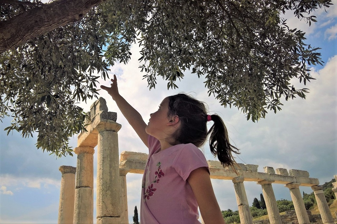 olive archaeology messene kid