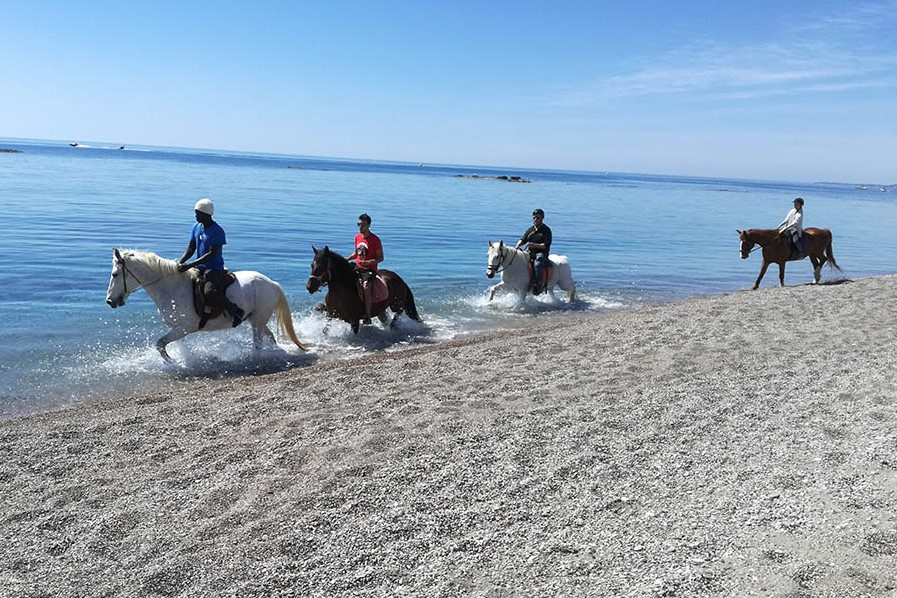 rhodes horse riding beach